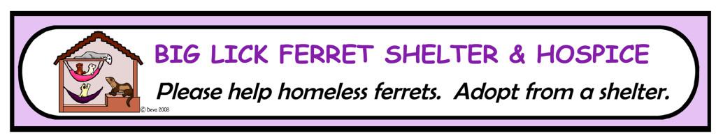 Big lick ferret shelter