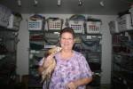 Denise's Delightful Dooker's Ferret Rescue Denise Cummings, Owner, Operator
