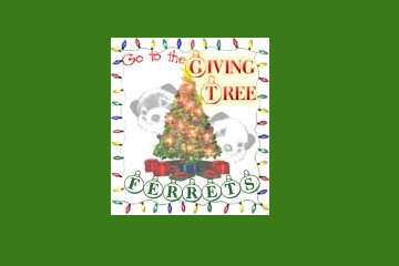 Ferret Giving Tree 2014