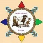Little Beasties Rescue, Gulfport, MS